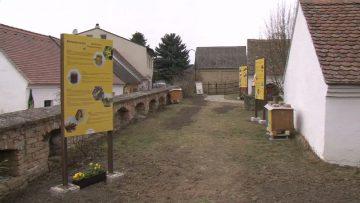 Saisoneröffnung VINOVERSUM Poysdorf 2018 W4tv122