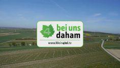 """""""Bei Uns Daham"""" Sendung Vom 11.09.2019 W4tv151"""