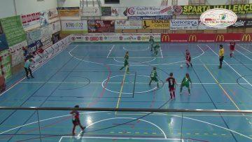 Sparta Jugend Fußballturnier 2019 Deutsch Wagram W4tv138